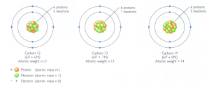 Stable and radioactive isotopes of carbon